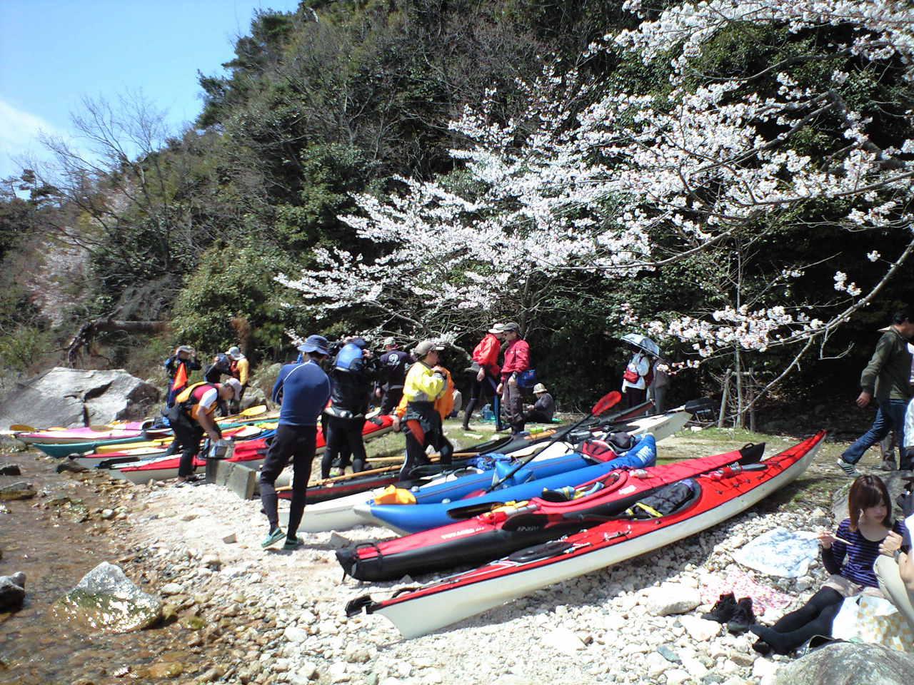 海津大崎・お花見シーカヤック 2010